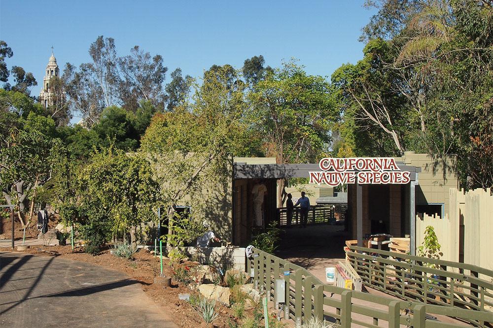 Reptile Mesa San Diego Zoo